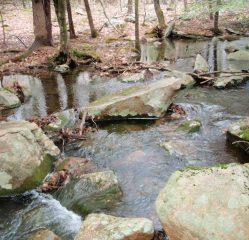 Upstream of the bridge